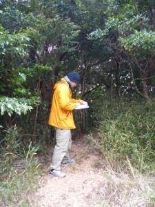 森の整備調査