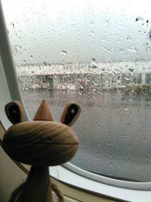 ヤワラカエルくん空港