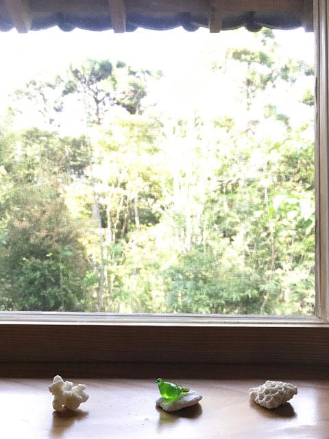 窓辺blog