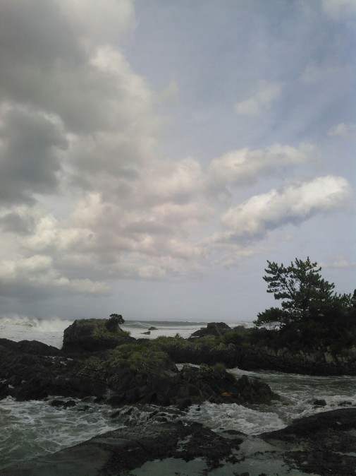 台風一過後の波2