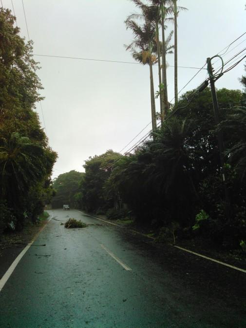 屋久島の台風事情