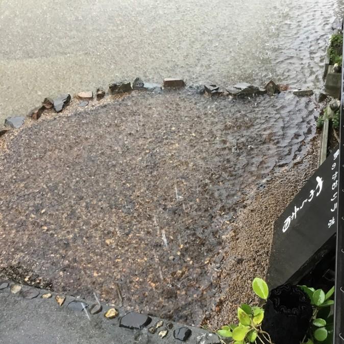 50年に一度の大雨(やわら香の近所の場合)