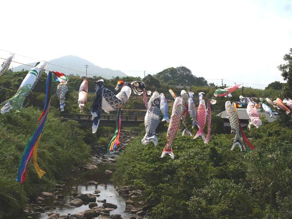 屋久島の「こどもの日」