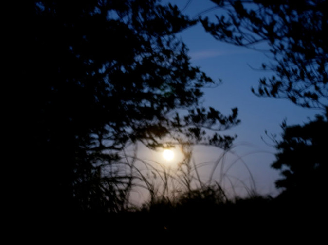 満月の今日、屋久島は大雨。