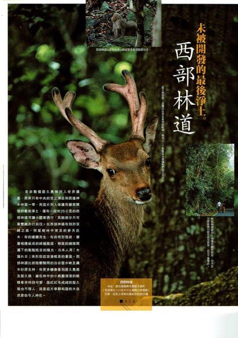 香港雑誌ヤクシカ